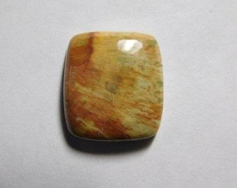 Petrified jasper Cabochons,Gemstone,Loose Stone,Gorgeous Handmade Petrified jasper Gemstone 100%Natural loose stone 24cts.(22X19)mm