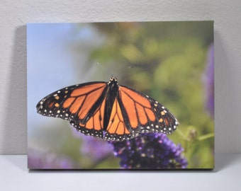 Wall Art of Butterfly, Gallery Wrap Canvas, Solid Back, Hinged hardware.