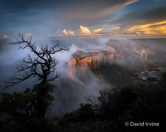 Shedding Her Cape, Cape Royal, Grand Canyon, Wotans Throne, North Rim, Sunset, Wall Art, Fine Art Photography, Arizona