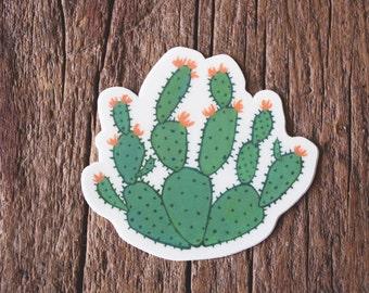 Prickly Pear Cactus Sticker // vinyl stickers