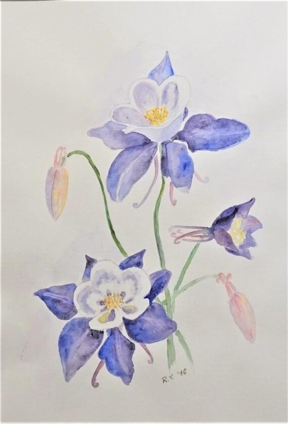 original watercolour columbine flowers painting watercolor