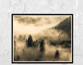 forest print, misty forest, nature photography, forest photography, misty forest print, Nature landscape, misty mountains, Woodland Wall Art