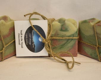 A Walk in the Woods Goat Milk Soap