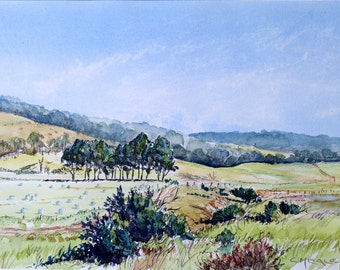 Summer Harvest Wiseleigh; original watercolour wash and pen