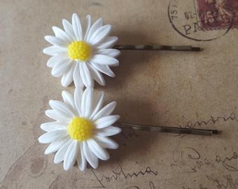 Two hair pins ~ Daisy ~.