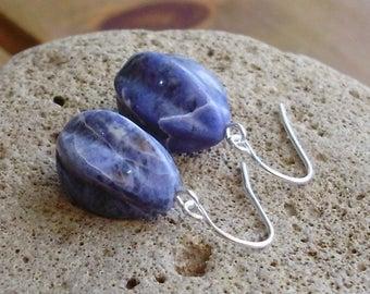 Sodalite Fluted Pear Drop Earrings (4)