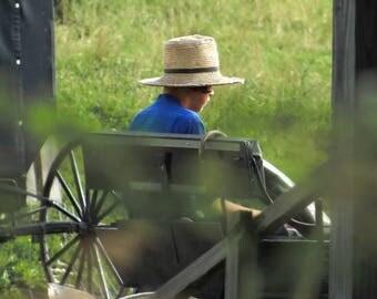 Straw Hat Summer Day