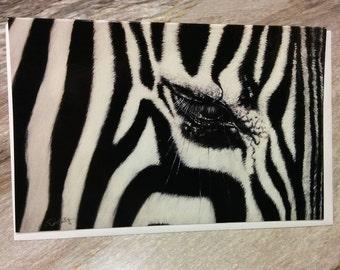 """Zebra"" greeting cards"
