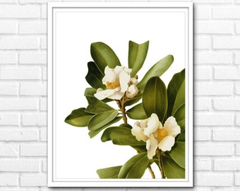 Magnolia Print, Modern Nature Wall Art, Printable Floral Art, Wall Decor INSTANT DOWNLOAD - 1019