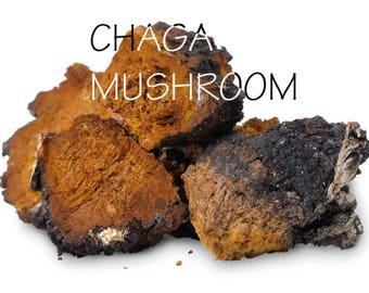 100g Chaga, Chaga mushroom, Siberian chaga
