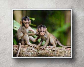 Baby monkey print, Nursery monkey print, Nursery monkey art, Printable monkey art, Baby monkey wall art, Nursery decor, Animal art