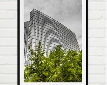 Urban glass building behind trees
