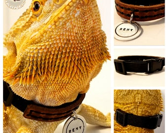 HerpaCollar - Adjustable Stitched Leather Collar for Sub-Adult & Adult Bearded Dragons w/ Name Tag Option by HerpaHarness