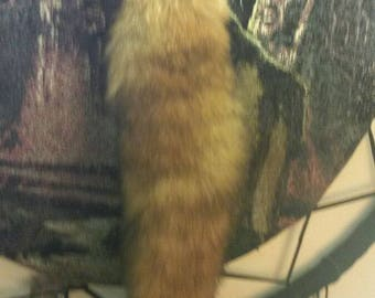 Soft Red Fox tail