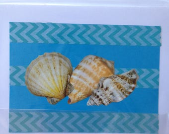 Noteworthy blank greeting cards-JAVA card collection-sea shell design