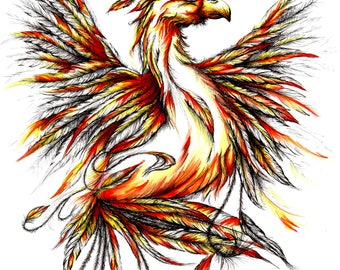 Phoenix Illustration Black and White/ Orange Yellow