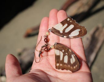 Green and brown real butterfly wing earrings