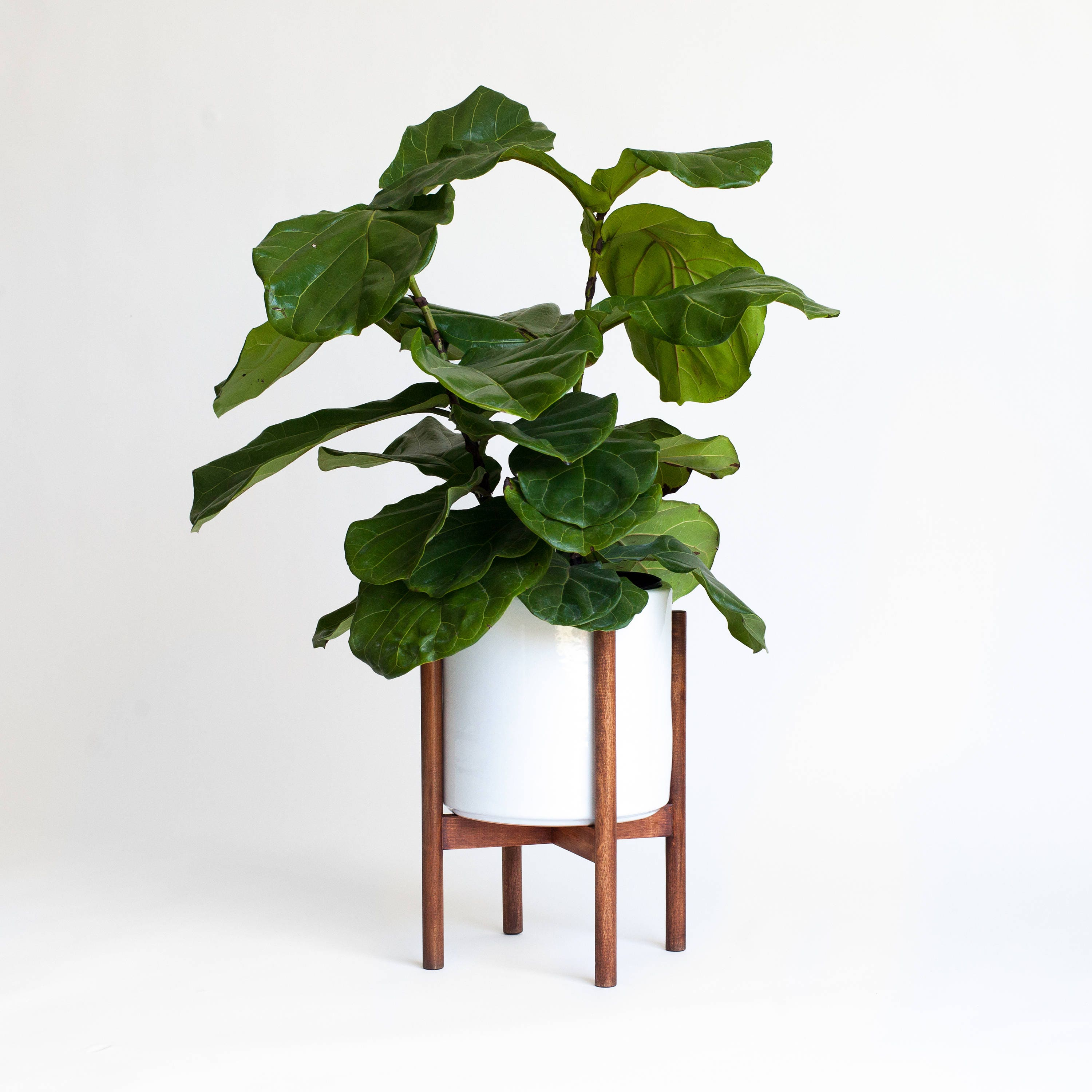 mid century modern planter plant stand with ceramic pot. Black Bedroom Furniture Sets. Home Design Ideas
