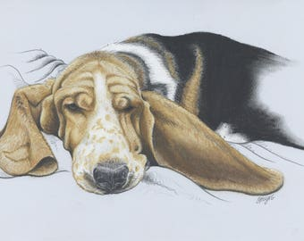 Single Pet Portrait Commission