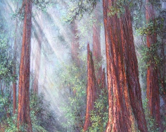 Sentinels in Time, Big Basin Redwoods, Original Fine Art, Oil Painting by Griselda Tello.