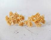 20 10mm honey yellow paper gypsophila - paper baby's breath