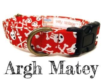"""Skull Dog Collar - Pirate Dog Collar - Boy Dog Collar - Antique Brass Hardware - """"Argh Matey"""""""