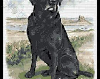 Black labrador standing counted cross stitch kit