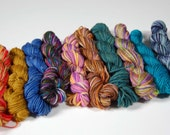 Mini Skein set 3- 10 skeins approx 20 yards each -sock and fingering weight yarn