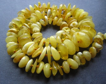 Butterscotch Baltic Amber beads rondelles - 9 inches genuine