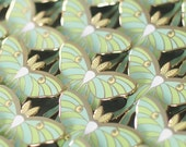 Luna Moth Enamel Lapen Pin (SECONDS SALE)