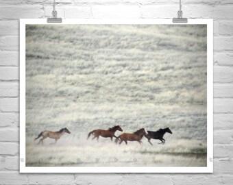 Wild Horse Photography, Horse Print, Equestrian Art, Horse Art, Equine Art, Ranch Photo, Prairie Art, Galloping Horses, Western Picture