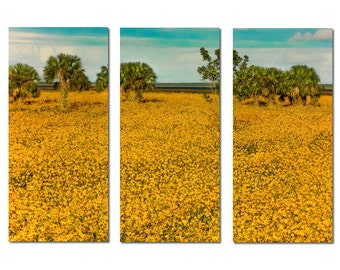 Field of Black Eyed Susans Canvas Triptych, 3 Panel Art, LARGE, Ready to Hang