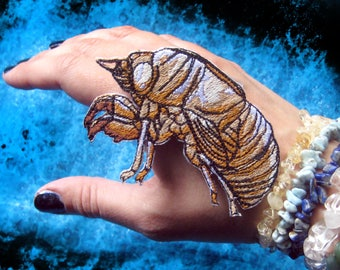 Awesome Cicada Shell  insect iron on Patch