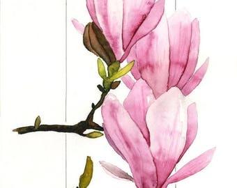 STUDIO SALE Pink, Purple, Green, Springtime Saucer Magnolia, Magnolias Watercolor by Clair Hartmann Original