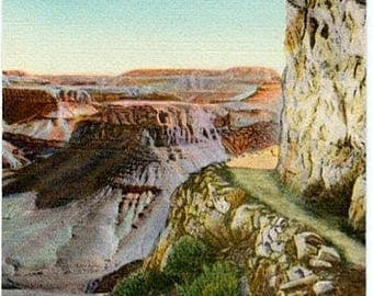Vintage Arizona Postcard - Bright Angel Trail at the Grand Canyon (Unused)