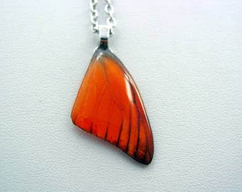 Real Butterfly Wings Appias Nero Orange Forewing Real Butterfly Wing Necklace