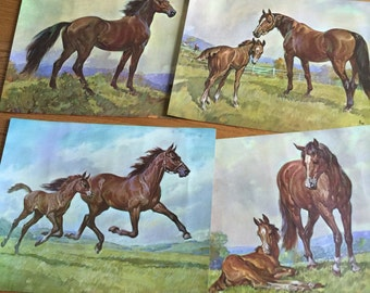 Vintage 1960s Horse Prints / Set of 4 Elmore Brown Horse Lithographs 1966 VGC / Framable Art, Childs Room Cottage Cabin Farm Decor