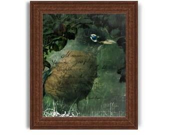 Robin Original Digital Art Download