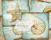 SALE 70% OFF - COASTERS Shabby Sea Shells - Digital Collage Coasters - Digital Maritime Tags - Nautical Images - Scrapbooking Backgrounds -