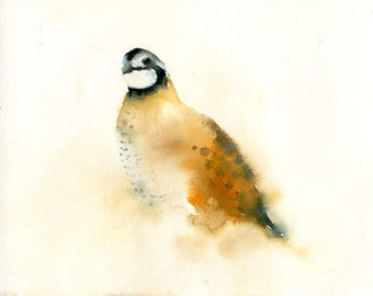 Quail Original watercolor painting 10x8inch