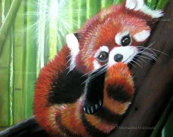 Red Panda Original Painting by Michaeline McDonald