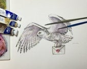 Delivery Owl - Original Watercolour Painting