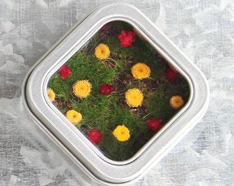 Office Decor, Cute Wedding Favor, Garden Party Favor, Garden Keepsake, Flower Magnet, Girl's Room Decor, Miniature Flower Garden
