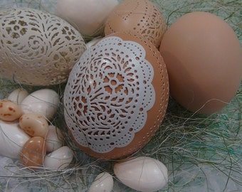 Carved Peek-a-boo Lace Egg: Mint Lace on Chocolate Brown Chicken Egg