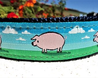 """Dog Collar 3/4"""" or 1"""" width Quick Release Blue Sky Pig - see detailed info within - no martingale, incl dogs neck measurement"""
