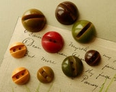 9 Screw Top Bakelite Buttons