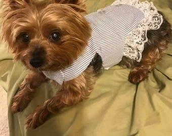 Lady in gray and white vintage shirt dress, wedding dog dress, custom dog dress bridesmaid flowergirl dog dress big and small dog dress