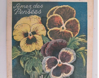 1948, French review, RUSTICA, Pansy, antique French flower illustration, spring flowers