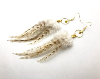 Feather Hoop Earrings Cream Striped Feather Earrings Natural Feather Gold Hoops Medium Long Dangle Earrings