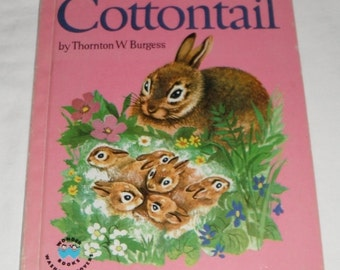 Vintage Wonder Book Little Petter Cottontail by Thornton W. Burgess pictures by Phoeb Erickson
